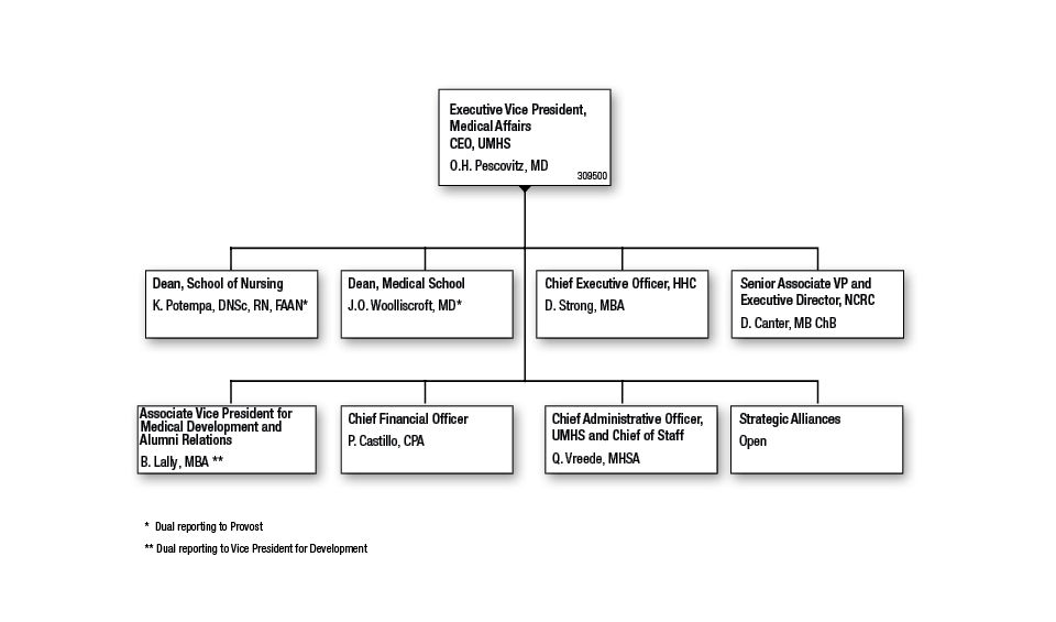 Amazing  Organizational Chart Medical And Medical Office Organizational Chart