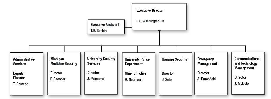 Division of Public Safety and Security